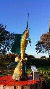 amara-beeld-vis