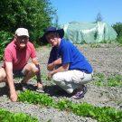 Boeren, burgers en buitentuinders